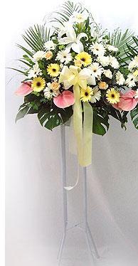 Gaziantep çiçek gönderme   perförje çiçegi dügün çiçekleri