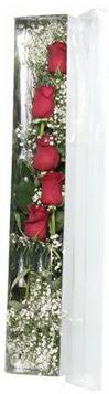 Gaziantep online çiçekçi , çiçek siparişi   5 adet gülden kutu güller