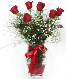 7 adet gülden cam içerisinde güller  Gaziantep ucuz çiçek gönder