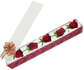 Gaziantep çiçek yolla , çiçek gönder , çiçekçi   kutu içerisinde 5 adet kirmizi gül