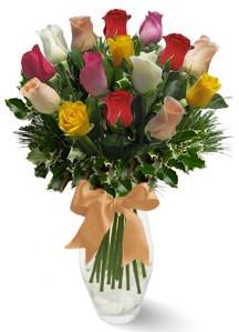 15 adet vazoda renkli gül  Gaziantep çiçek yolla , çiçek gönder , çiçekçi