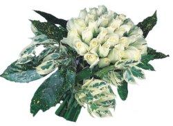 Gaziantep çiçek gönderme sitemiz güvenlidir  9 Beyaz gül Özel kisiler için