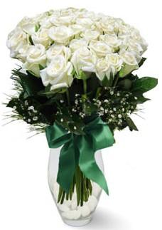 19 adet essiz kalitede beyaz gül  Gaziantep İnternetten çiçek siparişi