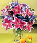 Gaziantep çiçekçiler  Sevgi bahçesi Özel  bir tercih