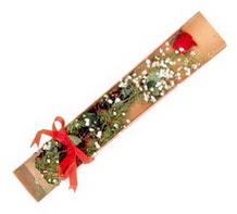 1 adet kirmizi gül  Gaziantep çiçek online çiçek siparişi