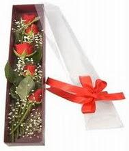kutu içinde 5 adet kirmizi gül  Gaziantep çiçek gönderme sitemiz güvenlidir