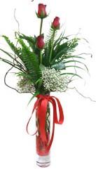 Gaziantep online çiçekçi , çiçek siparişi  3 adet kirmizi gül vazo içerisinde