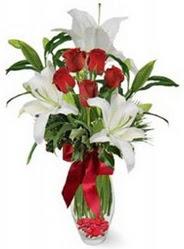 Gaziantep çiçek yolla  5 adet kirmizi gül ve 3 kandil kazablanka