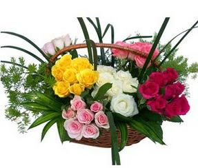 Gaziantep kaliteli taze ve ucuz çiçekler  35 adet rengarenk güllerden sepet tanzimi