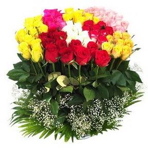 Gaziantep çiçekçiler  51 adet renkli güllerden aranjman tanzimi