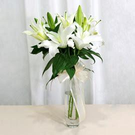 Gaziantep hediye çiçek yolla  2 dal kazablanka ile yapılmış vazo çiçeği