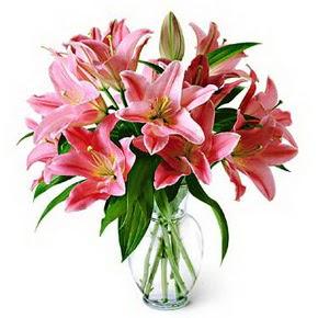 3 dal kazablanka görsel vazosu  Gaziantep çiçek gönderme sitemiz güvenlidir