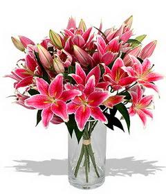 4 dal cazablanca görsel vazosu  Gaziantep yurtiçi ve yurtdışı çiçek siparişi