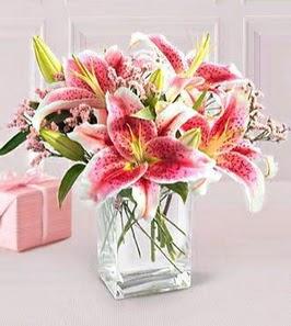 2 dal kazablanka görsel vazosu  Gaziantep online çiçekçi , çiçek siparişi