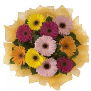 Gaziantep uluslararası çiçek gönderme  11 adet karışık gerbera çiçeği buketi