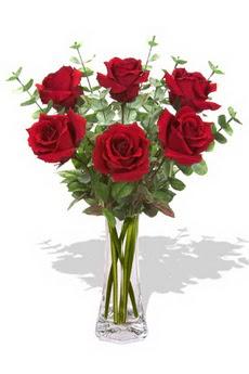 Gaziantep yurtiçi ve yurtdışı çiçek siparişi  6 kırmızı gül vazosu