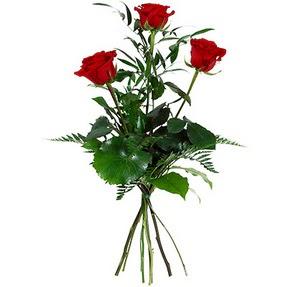 Gaziantep çiçek , çiçekçi , çiçekçilik  3 adet kırmızı gülden buket