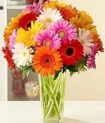 Gaziantep internetten çiçek satışı  15 adet gerbera çiçek vazosu