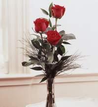 Gaziantep çiçek yolla , çiçek gönder , çiçekçi   Vazoda 3 adet güzel gül
