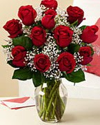 Sevgilime hediye 9 adet 1.ci kalite gül  Gaziantep hediye çiçek yolla