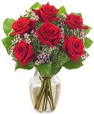 Kız arkadaşıma hediye 6 kırmızı gül  Gaziantep çiçek gönderme sitemiz güvenlidir