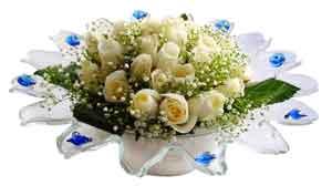 Gaziantep çiçek siparişi sitesi  11 adet Beyaz güller özel cam tanzim