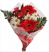 Mevsim çiçeklerinden görsel buket  Gaziantep İnternetten çiçek siparişi