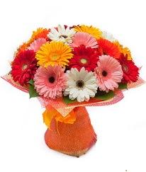 Renkli gerbera buketi  Gaziantep hediye çiçek yolla