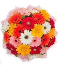 15 adet renkli gerbera buketi  Gaziantep online çiçek gönderme sipariş