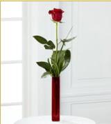 Vazo içerisinde 1 adet kırmızı gül  Gaziantep çiçek gönderme sitemiz güvenlidir