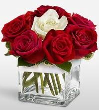Tek aşkımsın çiçeği 8 kırmızı 1 beyaz gül  Gaziantep çiçek , çiçekçi , çiçekçilik