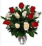 Vazo içerisinde 6 kırmızı 6 beyaz gül  Gaziantep güvenli kaliteli hızlı çiçek