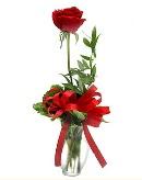 vazo içerisinde 1 adet kırmızı gül  Gaziantep çiçek online çiçek siparişi