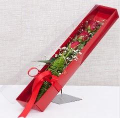 Kutu içerisinde 3 adet kırmızı gül  Gaziantep çiçek gönderme