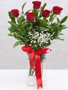 cam vazo içerisinde 5 adet kırmızı gül  Gaziantep çiçek satışı
