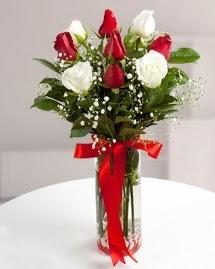 5 kırmızı 4 beyaz gül vazoda  Gaziantep çiçek satışı