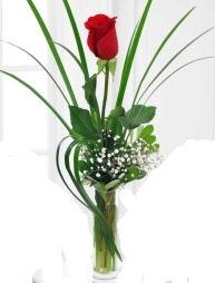 Cam içerisinde 1 kırmızı gül  Gaziantep 14 şubat sevgililer günü çiçek