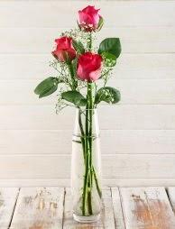 Cam içerisinde 3 kırmızı gül  Gaziantep çiçek servisi , çiçekçi adresleri