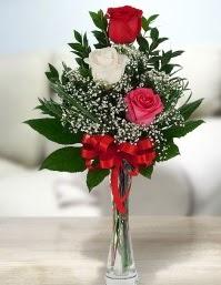 Camda 2 kırmızı 1 beyaz gül  Gaziantep kaliteli taze ve ucuz çiçekler