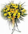 Gaziantep online çiçek gönderme sipariş  Sari kazablanka Ferforje