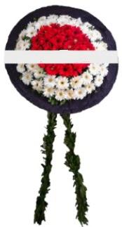 mozele çiçeği  Gaziantep çiçekçi mağazası