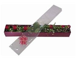 Gaziantep hediye çiçek yolla   6 adet kirmizi gül kutu içinde