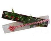 Gaziantep güvenli kaliteli hızlı çiçek  3 adet gül.kutu yaldizlidir.