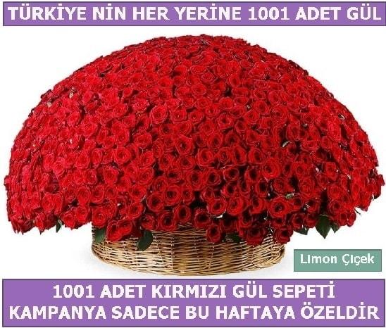 1001 Adet kırmızı gül Bu haftaya özel  Gaziantep uluslararası çiçek gönderme