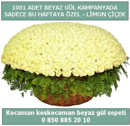 1001 adet beyaz gül sepeti özel kampanyada  Gaziantep 14 şubat sevgililer günü çiçek