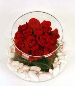 Cam fanusta 11 adet kırmızı gül  Gaziantep hediye sevgilime hediye çiçek
