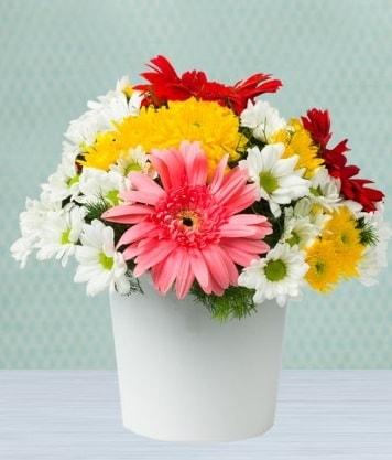Seramik Vazoda Gelbera ve Papatya  Gaziantep hediye sevgilime hediye çiçek