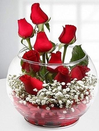 Kırmızı Mutluluk fanusta 9 kırmızı gül  Gaziantep online çiçekçi , çiçek siparişi