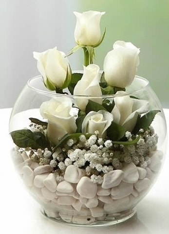 Beyaz Mutluluk 9 beyaz gül fanusta  Gaziantep online çiçekçi , çiçek siparişi