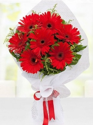 Kırmızı Gelbera Buketi  Gaziantep çiçek gönderme sitemiz güvenlidir